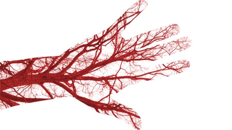 Autologous blood